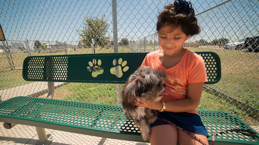 Girl and Her Dog on Bench